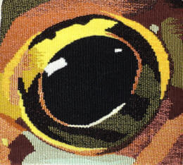 Frog eye 2 tapestry image